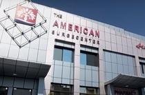 The American Surgecenter